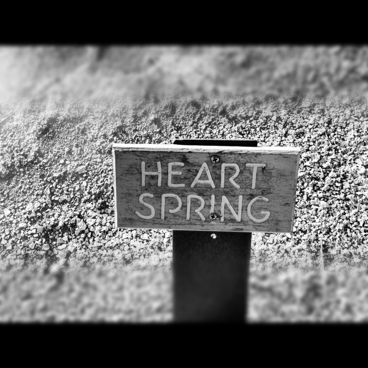 HEART SPRINGS in Wyoming!!